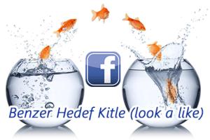 facebook-benzer-hedef-kitle